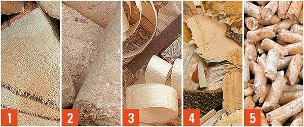 tipologie_biomassa